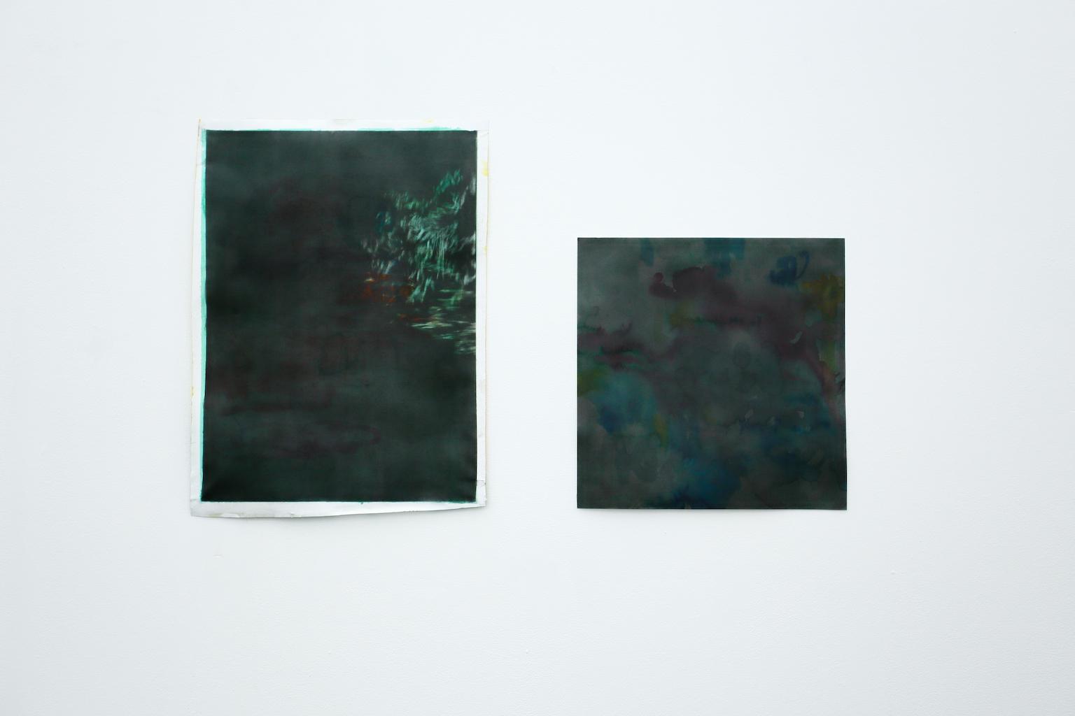 Oeuvres sur papier de Benjamin Viort Exposition IMMERSION au CACL - mai 2015