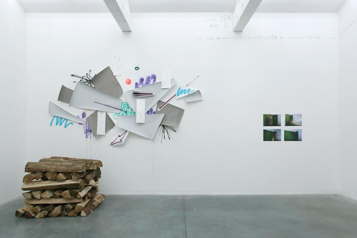 Installation de Guillaume Mathivet (gauche de l'image) Photographies de Emma Charrin et Olivier Muller (droite de l'image) Exposition IMMERSION au CACL - mai 2015