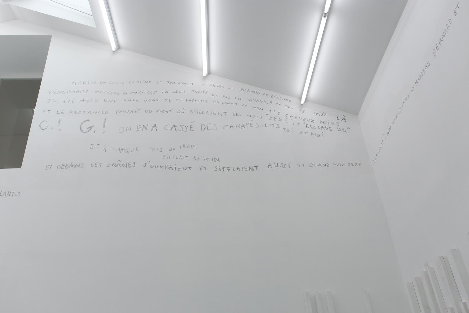Installation de Guillaume Sauzay Exposition IMMERSION au CACL - mai 2015